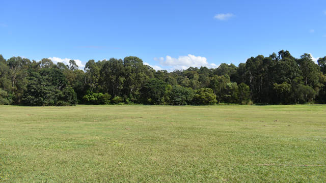 Large open grass field, bushland in the background, blue skies, taken at Melaleuca Environmental Park near Manly Queensland